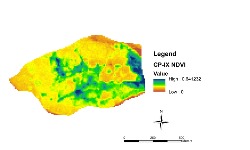 Figure 2: NDVI analysis results for the three catchments A) CP-III, B) CP-VI and C) CP-IX